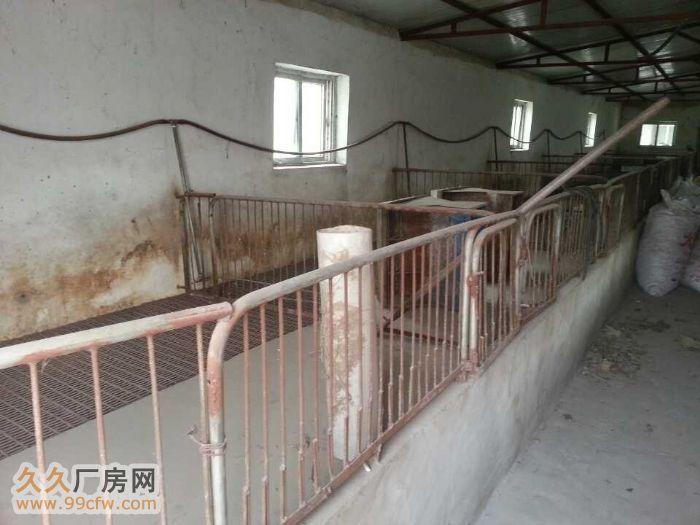 最先進的養豬場設計圖展示