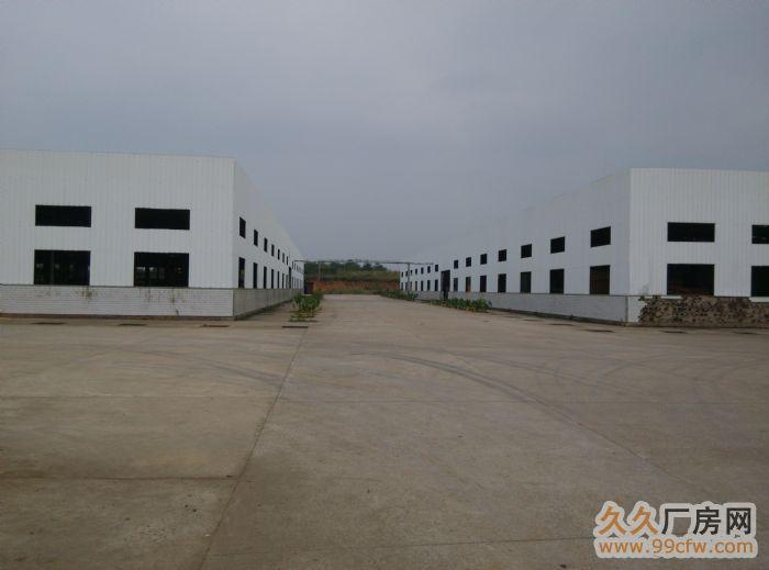 大型钢结构标准厂房出租永州零陵207-图(3)