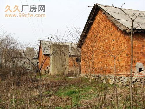 南京溧水经济开发区60亩原生态、土地、厂房、养殖场、林场-图(3)