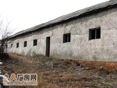 南京溧水经济开发区60亩原生态、土地、厂房、养殖场、林场-图(4)