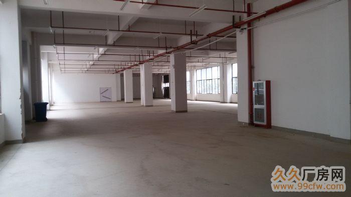 王家营火车站附近厂房仓库出售,出租(新册小商品加工基地)-图(6)