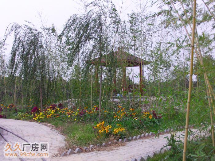 咸阳市渭城区东郊厂房仓库出租-图(7)