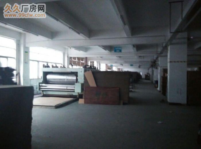 光明新区龙大高速长丰工业园1至2楼各2600平出租-图(3)