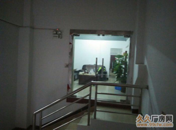 光明新区龙大高速长丰工业园1至2楼各2600平出租-图(4)