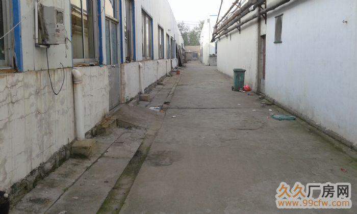 枣庄10000㎡优质门市、仓库、钢架厂房招商(风水极佳)-图(4)