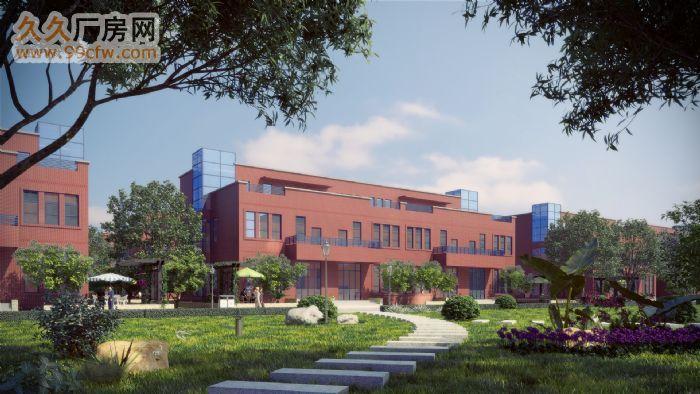 600—2000平米三层框架结构厂房低价出租-图(4)
