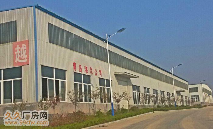 山东盛唐国际工业物流园全新厂房招租!-图(2)