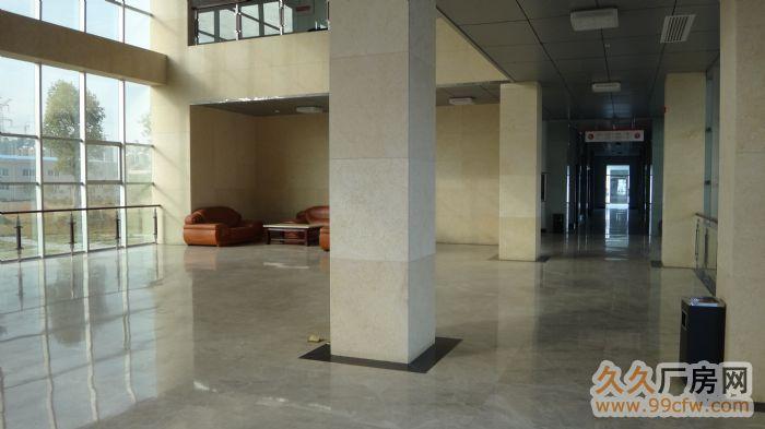 豪华装修办公楼、厂房、宿舍楼打包出租-图(2)