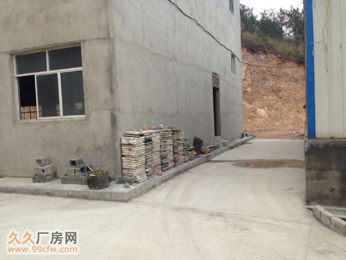 厂房出租3层式3300平,另两栋钢结构分别500和1000平-图(3)