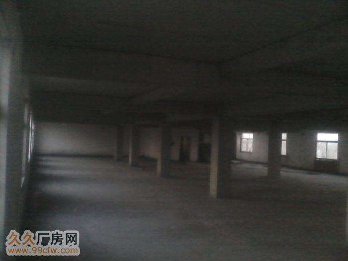 个人厂房三层两千平米交通便利三相电-图(3)