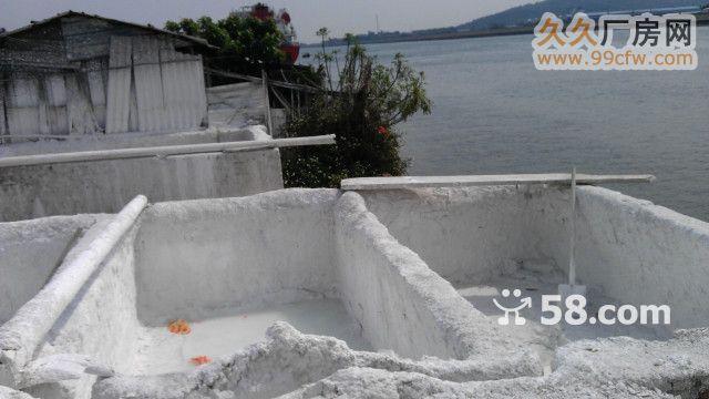 容桂扁窖南堤路有码头出租-图(6)