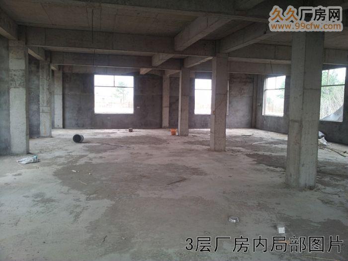316国道科技学院附近全新框架式厂房出租-图(6)