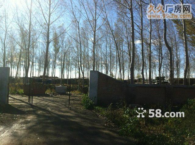 紧邻巴彦县城公路旁生态厂-图(4)