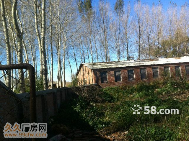 紧邻巴彦县城公路旁生态厂-图(6)