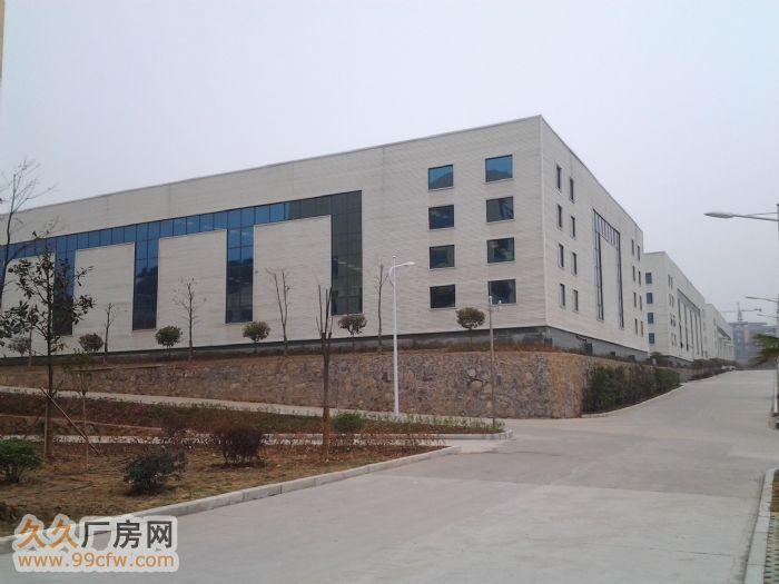 新建工业厂房/办公楼/仓库/出租/转让-图(3)