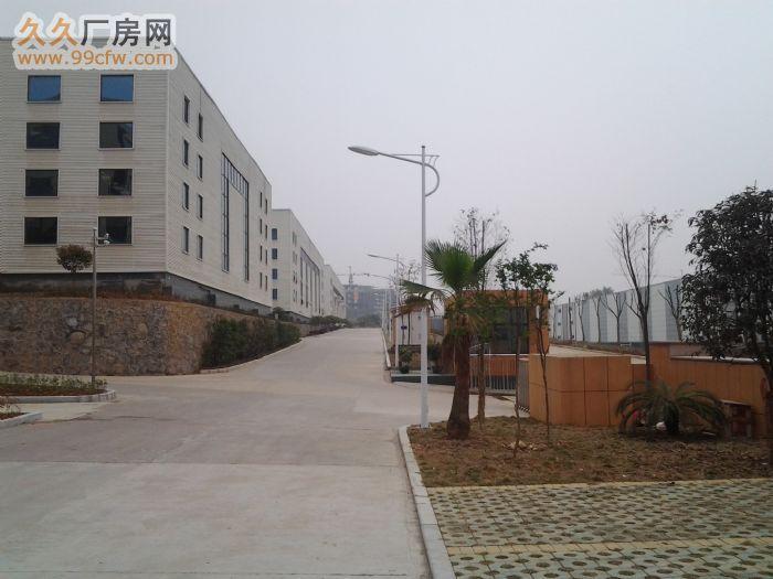 新建工业厂房/办公楼/仓库/出租/转让-图(4)