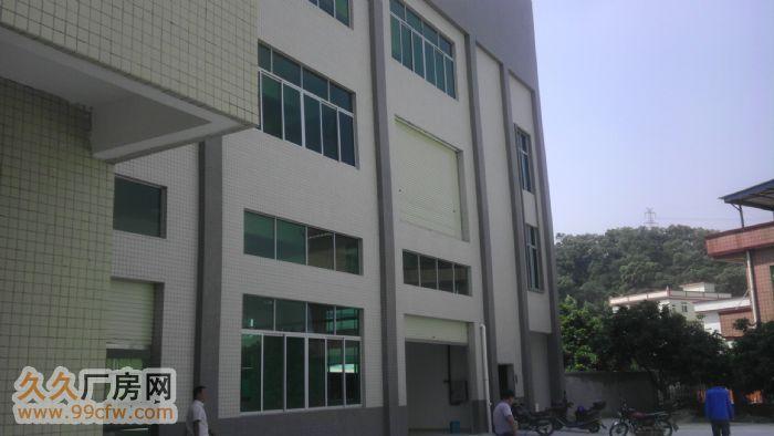 三东大道附近标准1楼出租-图(3)