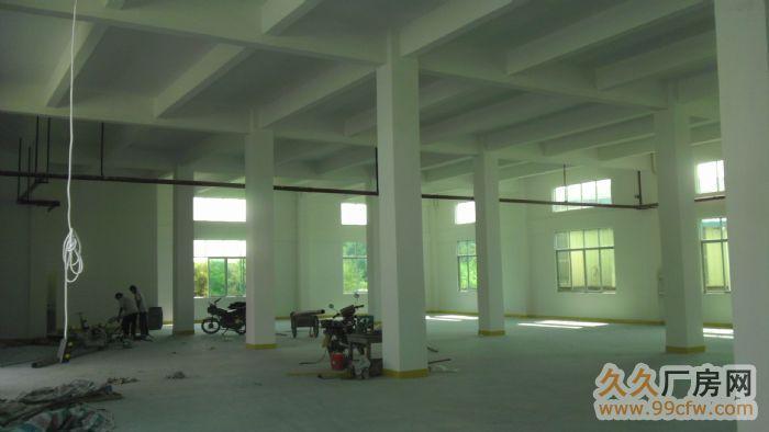 三东大道附近标准1楼出租-图(4)