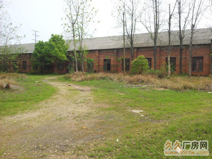 抚州展坪新街52亩土地及4000平米厂房租赁,可分割出租-图(2)