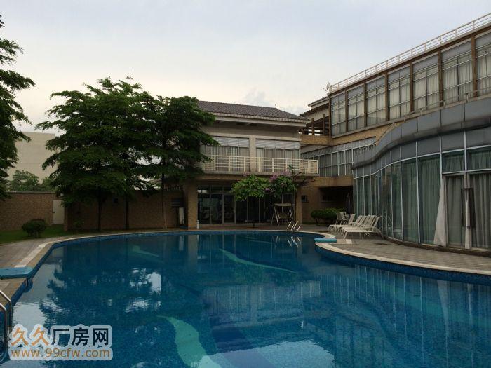 两亩地带游泳池的别墅