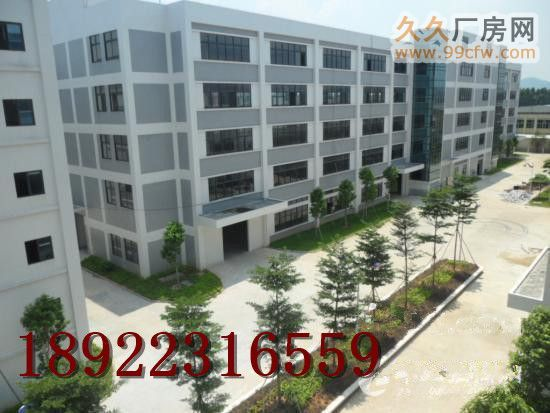 广州永和经济技术开发区工业园2.3W方出租-图(4)