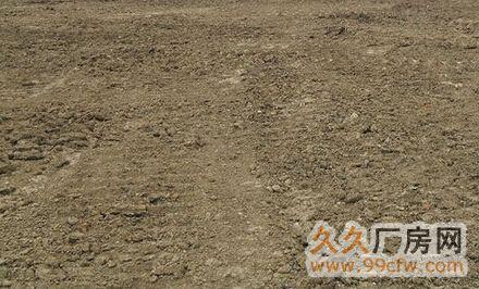 顺德陈村农耕地出租,将近8亩-图(2)