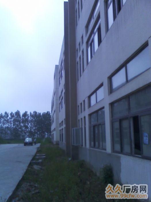 出租全新标准厂房2幢-图(2)