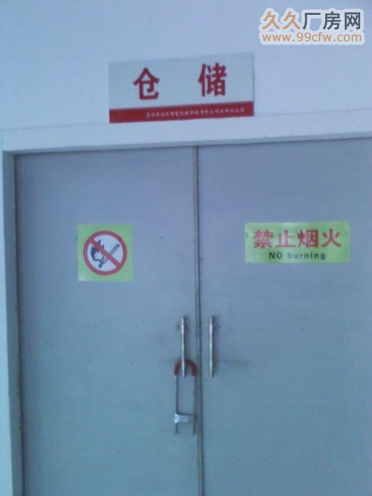 出租全新标准厂房2幢-图(4)