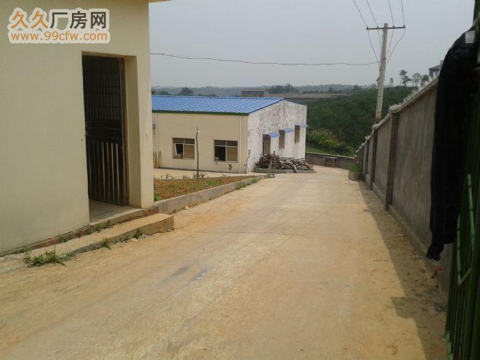 三峡机场附近厂房出租,价格面议-图(3)