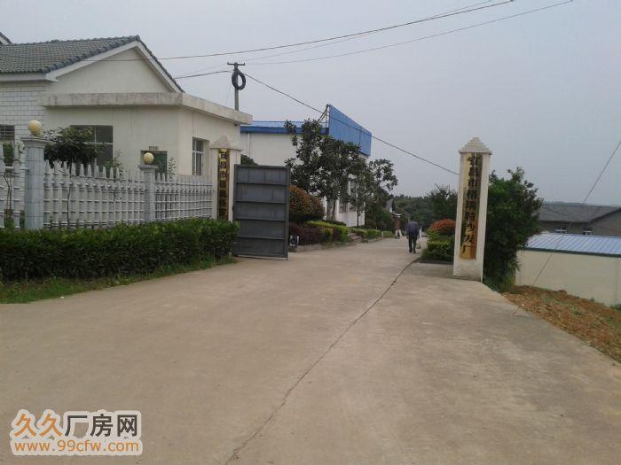 三峡机场附近厂房出租,价格面议-图(5)