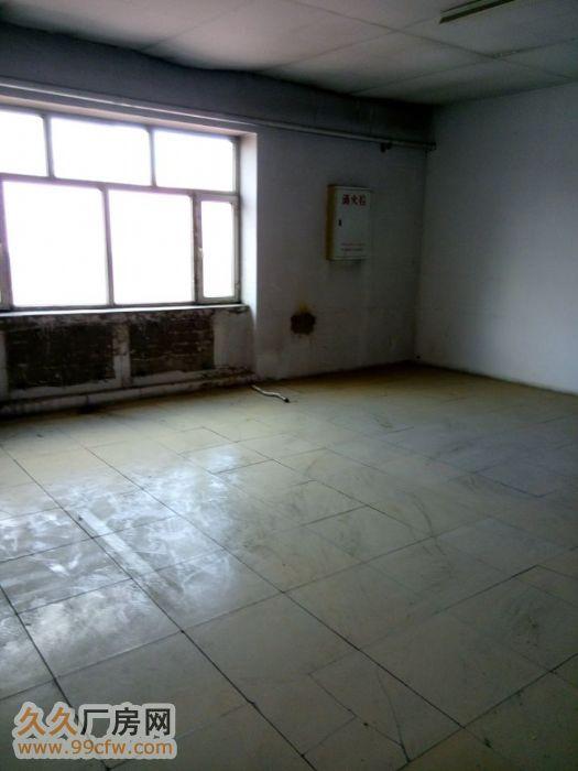 低价出租哈达800米厂房-图(2)
