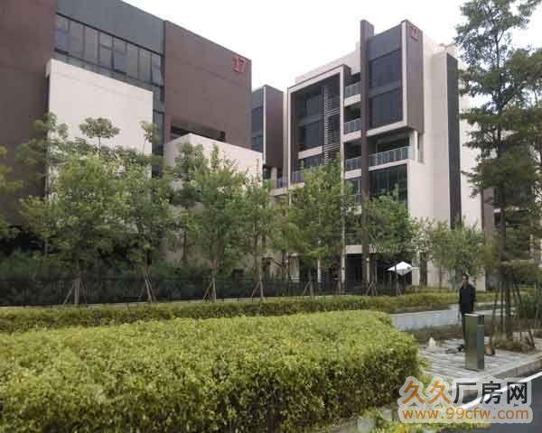 珠海横琴大桥附近门道12套商务办公楼出售-图(6)