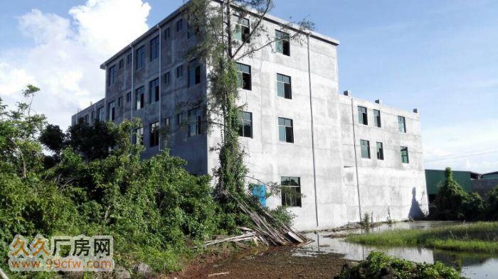 本楼房两栋,共约2000平方,可用于仓库、厂房等多功能用途,-图(1)