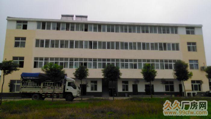 好地段,G316国道边新门面厂房及办公楼整套出租-图(1)