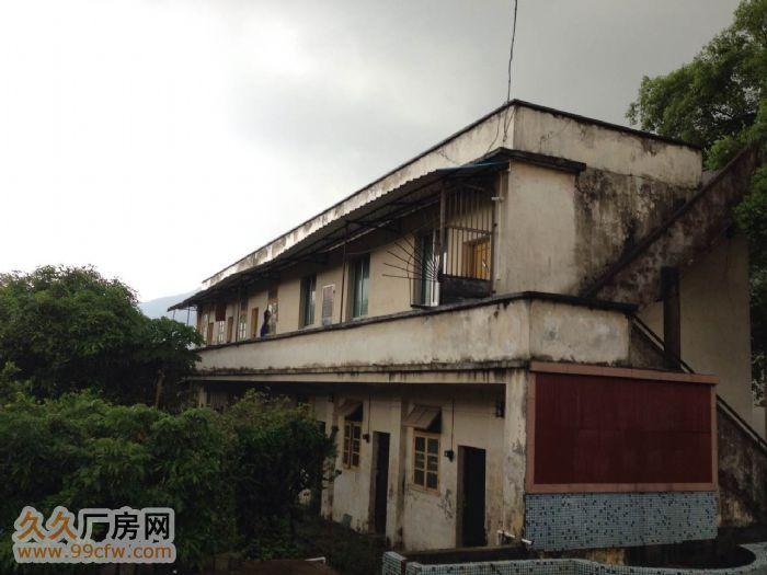 肇庆市鼎湖区莲花镇现有厂房招租,占地面积约15亩-图(2)