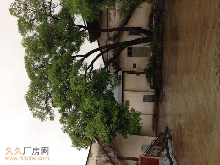 肇庆市鼎湖区莲花镇现有厂房招租,占地面积约15亩-图(3)