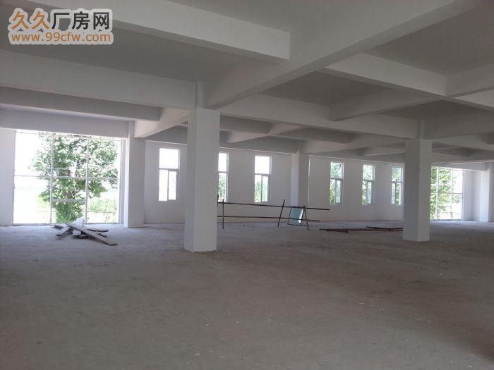 8米高2100方独栋厂房租售-图(2)