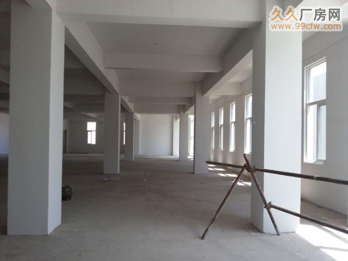 8米高2100方独栋厂房租售-图(3)