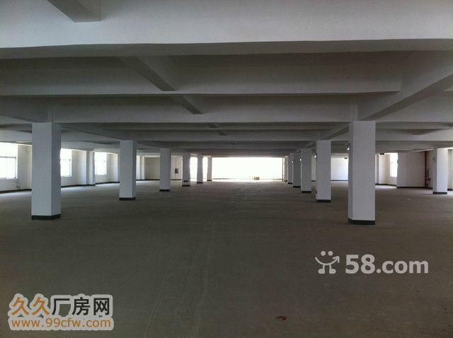汉川附近仙桃市城区标准厂房独立仓库招租-图(3)