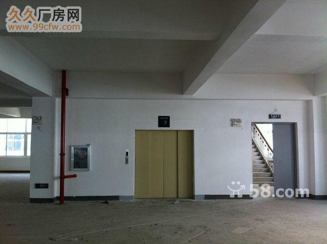 汉川附近仙桃市城区标准厂房独立仓库招租-图(4)