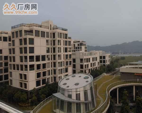 珠海市洪湾商贸区门道12套商务办公楼出售-图(1)