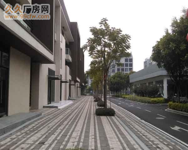 珠海市洪湾商贸区门道12套商务办公楼出售-图(3)