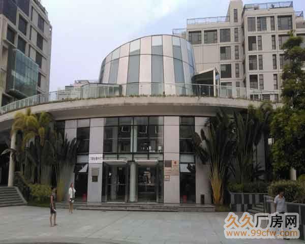 珠海市洪湾商贸区门道12套商务办公楼出售-图(4)