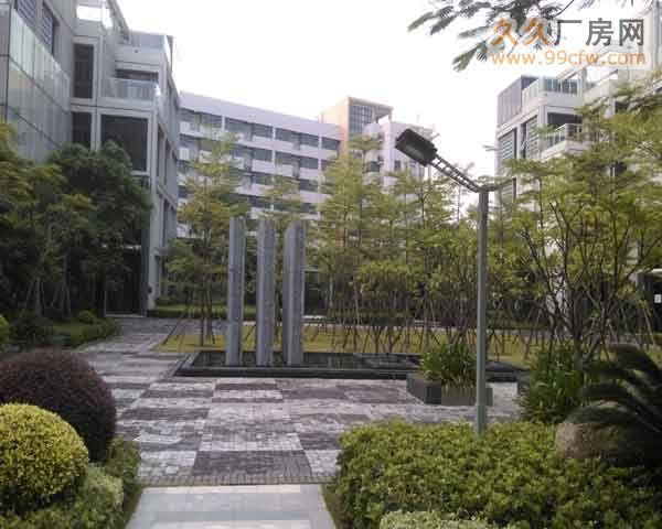 珠海市洪湾商贸区门道12套商务办公楼出售-图(5)