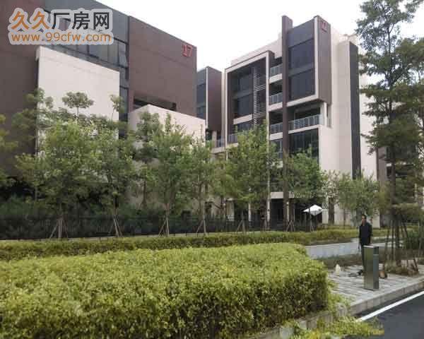 珠海市洪湾商贸区门道12套商务办公楼出售-图(6)
