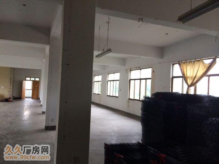 龙游厂房出租,城南开发区厂房,厂房出租,仓库出租-图(5)