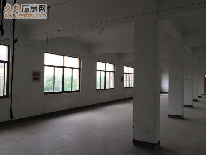 龙游厂房出租,城南开发区厂房,厂房出租,仓库出租-图(7)