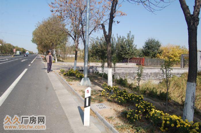 地理位置好的大型厂房大院出租、出售(位于滨州沾化)-图(5)