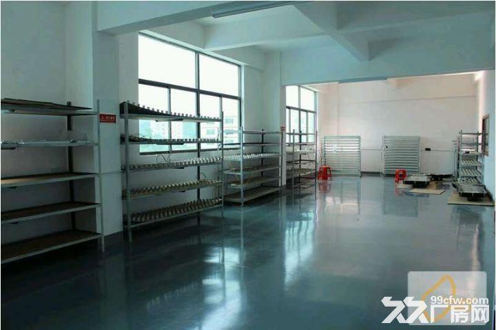 滴水8米高厂房招租、面积可以分租、另有标准厂房出租-图(3)