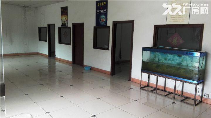 独院单层厂房出租1400平米-图(1)